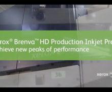 Cribsa Video 4 220x180 Cribsa Document Services